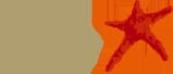 lundbeck-logo